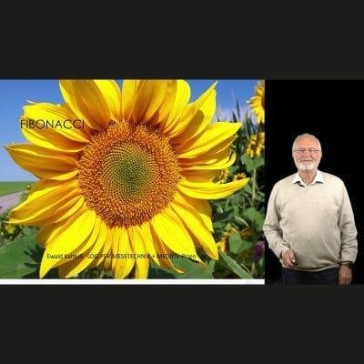 Vortrag Fibonacci und Zahlen in der Natur