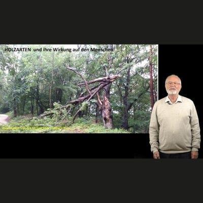 Vortrag Holzarten und ihre Wirkung auf Menschen